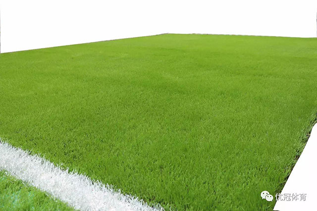Hunan Compus Grass Artificial Turf Co., Ltd.